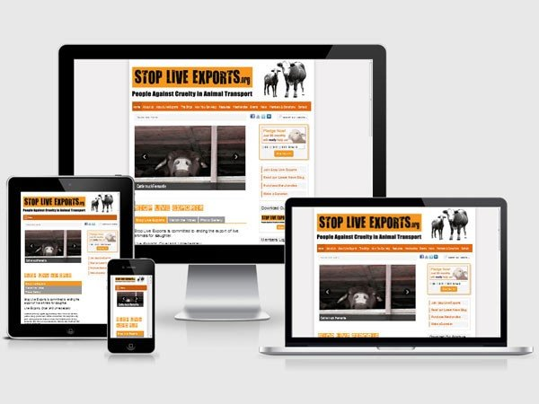Stop Live Exports - Membership website design